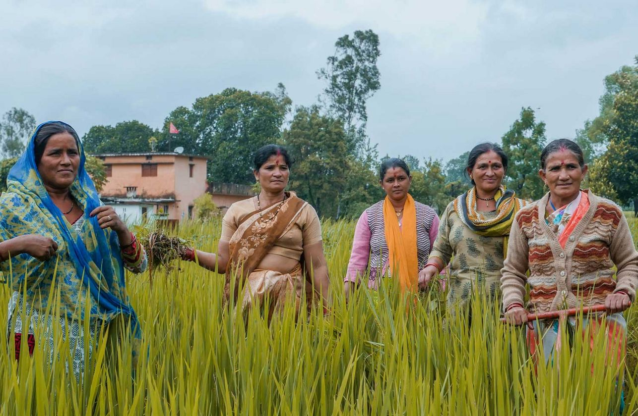 Biogas Plants in Rural Settings – myclimate
